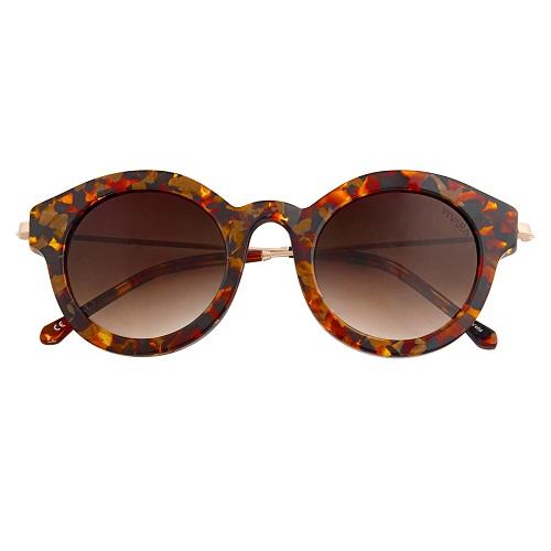 Óculos de Sol Dots Tartaruga 3902742bb8